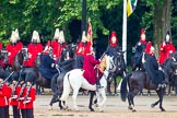 The Colonel's Review 2014. Horse Guards Parade, Westminster, London,  United Kingdom, on 07 June 2014 at 12:05, image #701