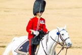 The Colonel's Review 2014. Horse Guards Parade, Westminster, London,  United Kingdom, on 07 June 2014 at 12:06, image #704