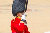 The Colonel's Review 2014. Horse Guards Parade, Westminster, London,  United Kingdom, on 07 June 2014 at 12:06, image #705