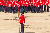 The Colonel's Review 2014. Horse Guards Parade, Westminster, London,  United Kingdom, on 07 June 2014 at 12:07, image #707