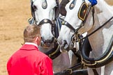 The Colonel's Review 2014. Horse Guards Parade, Westminster, London,  United Kingdom, on 07 June 2014 at 12:08, image #712