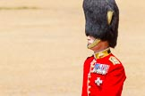 The Colonel's Review 2014. Horse Guards Parade, Westminster, London,  United Kingdom, on 07 June 2014 at 12:08, image #715