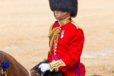 The Colonel's Review 2014. Horse Guards Parade, Westminster, London,  United Kingdom, on 07 June 2014 at 12:09, image #717