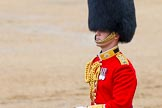 The Colonel's Review 2014. Horse Guards Parade, Westminster, London,  United Kingdom, on 07 June 2014 at 12:09, image #718