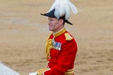The Colonel's Review 2014. Horse Guards Parade, Westminster, London,  United Kingdom, on 07 June 2014 at 12:09, image #719