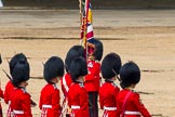 The Colonel's Review 2014. Horse Guards Parade, Westminster, London,  United Kingdom, on 07 June 2014 at 12:10, image #724