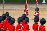 The Colonel's Review 2014. Horse Guards Parade, Westminster, London,  United Kingdom, on 07 June 2014 at 12:10, image #725