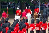 The Colonel's Review 2014. Horse Guards Parade, Westminster, London,  United Kingdom, on 07 June 2014 at 12:10, image #727