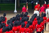 The Colonel's Review 2014. Horse Guards Parade, Westminster, London,  United Kingdom, on 07 June 2014 at 12:10, image #728
