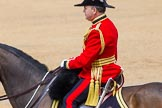 The Colonel's Review 2014. Horse Guards Parade, Westminster, London,  United Kingdom, on 07 June 2014 at 12:11, image #730