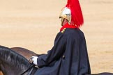 The Colonel's Review 2014. Horse Guards Parade, Westminster, London,  United Kingdom, on 07 June 2014 at 12:11, image #731