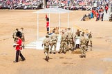 The Colonel's Review 2014. Horse Guards Parade, Westminster, London,  United Kingdom, on 07 June 2014 at 12:11, image #733