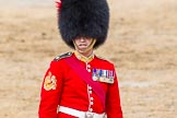 The Colonel's Review 2014. Horse Guards Parade, Westminster, London,  United Kingdom, on 07 June 2014 at 12:15, image #738