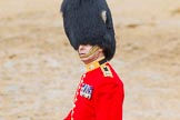 The Colonel's Review 2014. Horse Guards Parade, Westminster, London,  United Kingdom, on 07 June 2014 at 12:15, image #739