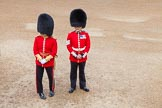 Trooping the Colour 2014. Horse Guards Parade, Westminster, London SW1A,  United Kingdom, on 14 June 2014 at 09:29, image #19