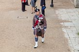 Trooping the Colour 2014. Horse Guards Parade, Westminster, London SW1A,  United Kingdom, on 14 June 2014 at 09:31, image #21