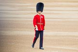 Trooping the Colour 2014. Horse Guards Parade, Westminster, London SW1A,  United Kingdom, on 14 June 2014 at 09:38, image #28