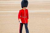 Trooping the Colour 2014. Horse Guards Parade, Westminster, London SW1A,  United Kingdom, on 14 June 2014 at 09:38, image #29