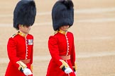 Trooping the Colour 2014. Horse Guards Parade, Westminster, London SW1A,  United Kingdom, on 14 June 2014 at 09:44, image #49