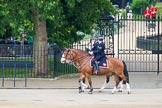 Trooping the Colour 2014. Horse Guards Parade, Westminster, London SW1A,  United Kingdom, on 14 June 2014 at 09:51, image #56