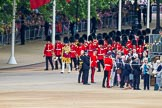 Trooping the Colour 2014. Horse Guards Parade, Westminster, London SW1A,  United Kingdom, on 14 June 2014 at 10:10, image #70