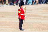 Trooping the Colour 2014. Horse Guards Parade, Westminster, London SW1A,  United Kingdom, on 14 June 2014 at 10:12, image #74