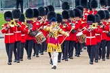 Trooping the Colour 2014. Horse Guards Parade, Westminster, London SW1A,  United Kingdom, on 14 June 2014 at 10:12, image #76