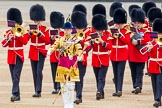 Trooping the Colour 2014. Horse Guards Parade, Westminster, London SW1A,  United Kingdom, on 14 June 2014 at 10:13, image #79