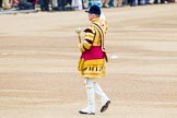 Trooping the Colour 2014. Horse Guards Parade, Westminster, London SW1A,  United Kingdom, on 14 June 2014 at 10:13, image #80
