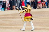 Trooping the Colour 2014. Horse Guards Parade, Westminster, London SW1A,  United Kingdom, on 14 June 2014 at 10:13, image #81