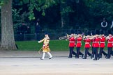 Trooping the Colour 2014. Horse Guards Parade, Westminster, London SW1A,  United Kingdom, on 14 June 2014 at 10:14, image #87