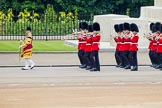 Trooping the Colour 2014. Horse Guards Parade, Westminster, London SW1A,  United Kingdom, on 14 June 2014 at 10:15, image #90