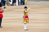 Trooping the Colour 2014. Horse Guards Parade, Westminster, London SW1A,  United Kingdom, on 14 June 2014 at 10:17, image #108