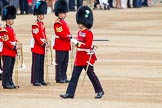 Trooping the Colour 2014. Horse Guards Parade, Westminster, London SW1A,  United Kingdom, on 14 June 2014 at 10:20, image #114