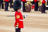 Trooping the Colour 2014. Horse Guards Parade, Westminster, London SW1A,  United Kingdom, on 14 June 2014 at 10:22, image #115