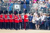 Trooping the Colour 2014. Horse Guards Parade, Westminster, London SW1A,  United Kingdom, on 14 June 2014 at 10:24, image #119