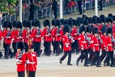 Trooping the Colour 2014. Horse Guards Parade, Westminster, London SW1A,  United Kingdom, on 14 June 2014 at 10:24, image #123