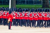 Trooping the Colour 2014. Horse Guards Parade, Westminster, London SW1A,  United Kingdom, on 14 June 2014 at 10:24, image #127