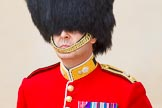 Trooping the Colour 2014. Horse Guards Parade, Westminster, London SW1A,  United Kingdom, on 14 June 2014 at 10:24, image #129