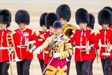 Trooping the Colour 2014. Horse Guards Parade, Westminster, London SW1A,  United Kingdom, on 14 June 2014 at 10:25, image #137