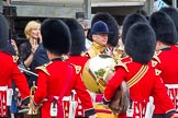 Trooping the Colour 2014. Horse Guards Parade, Westminster, London SW1A,  United Kingdom, on 14 June 2014 at 10:26, image #147