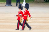 Trooping the Colour 2014. Horse Guards Parade, Westminster, London SW1A,  United Kingdom, on 14 June 2014 at 10:27, image #158