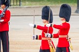 Trooping the Colour 2014. Horse Guards Parade, Westminster, London SW1A,  United Kingdom, on 14 June 2014 at 10:27, image #159