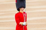 Trooping the Colour 2014. Horse Guards Parade, Westminster, London SW1A,  United Kingdom, on 14 June 2014 at 10:28, image #160