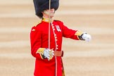 Trooping the Colour 2014. Horse Guards Parade, Westminster, London SW1A,  United Kingdom, on 14 June 2014 at 10:28, image #161