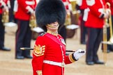 Trooping the Colour 2014. Horse Guards Parade, Westminster, London SW1A,  United Kingdom, on 14 June 2014 at 10:29, image #163