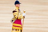 Trooping the Colour 2014. Horse Guards Parade, Westminster, London SW1A,  United Kingdom, on 14 June 2014 at 10:29, image #165