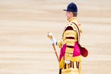 Trooping the Colour 2014. Horse Guards Parade, Westminster, London SW1A,  United Kingdom, on 14 June 2014 at 10:29, image #166