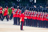 Trooping the Colour 2014. Horse Guards Parade, Westminster, London SW1A,  United Kingdom, on 14 June 2014 at 10:29, image #167