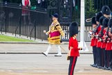 Trooping the Colour 2014. Horse Guards Parade, Westminster, London SW1A,  United Kingdom, on 14 June 2014 at 10:29, image #168
